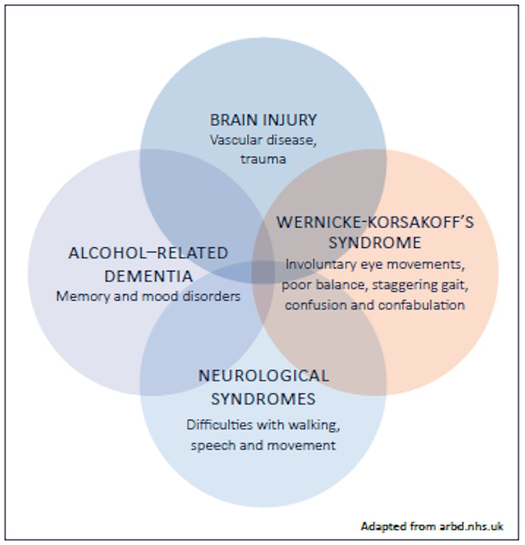 Alcohol Brain Damage >> Alcohol Related Brain Damage Quick Guide For Professionals
